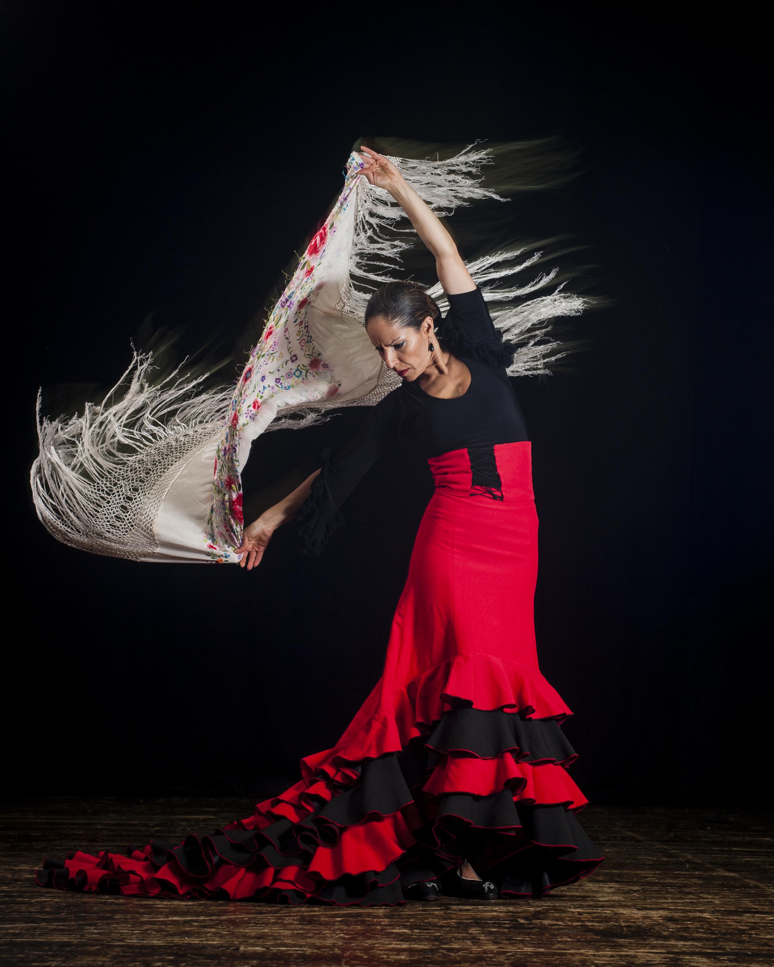 Flamenco danceur